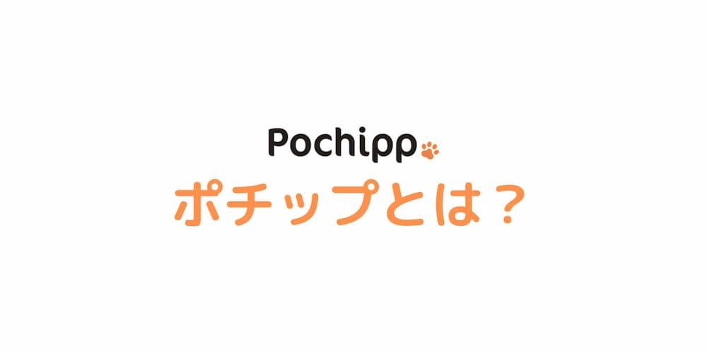 Pochippとは?